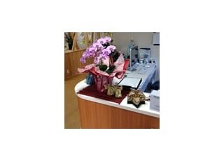 受付受付です、季節の花を飾っております。質問があれば、笑顔でお応えします。お気軽にお声掛けください。