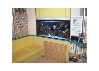待合室(2):水槽にはお魚もたくさんいます♪