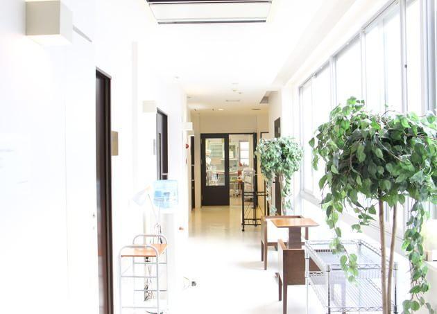 Wクリニックフォーマザーズ幕張 幕張本郷駅 6の写真